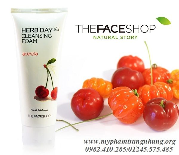 sua-rua-mat-herb-day-365-cleansing-foam-thefaceshop_result