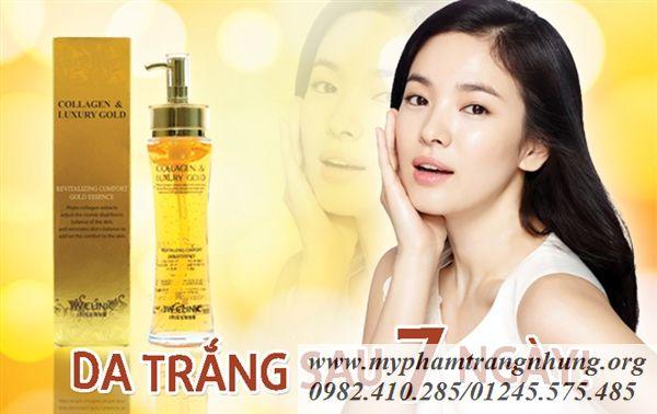banner-collagen-1_result