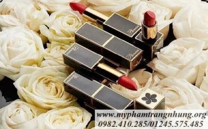 SON THỎI PLUMERIA COLOR INFUSION MATTE LIP