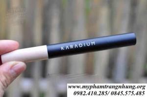 Che khuyết điểm 2 đầu Karadium skin perfection concealer